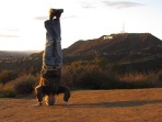 Hollywood Headstand, Los Angeles, USA
