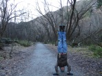 Isildur's Death Headstand, Arrowtown, New Zealand