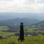 Black Forest Headstand, Germany